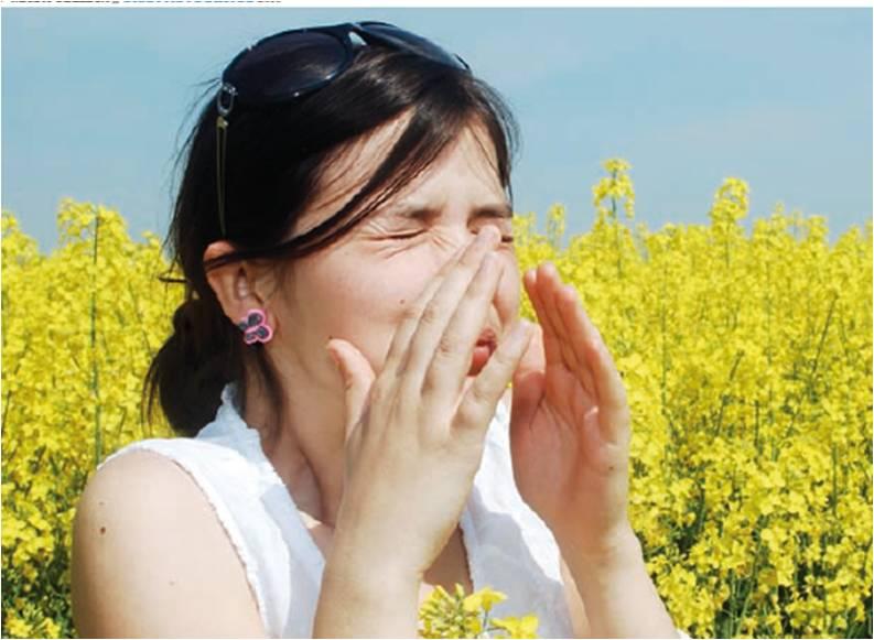 Pólenes vão estar muito elevados durante esta semana