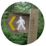 Oxigénio: pedestres, corridas, trail e BTT na região