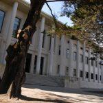 Mulher condenada a dois anos e meio de pena suspensa por roubos de telemóvel em Leiria