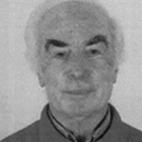 João Manuel Ribeiro da Silva