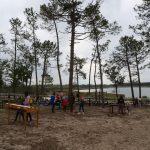 Leiria vai plantar 20 mil árvores em novembro junto à lagoa da Ervedeira
