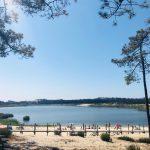 Lagoa da Ervedeira acolhe Floresta Viva e vai ter novos passadiços