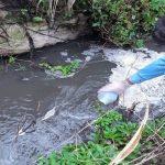 GNR identifica origem de descarga ilegal de efluentes para a ribeira do Sirol