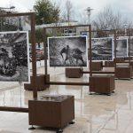 """Génesis: Uma """"ode visual"""" sobre o incrível mundo por descobrir no centro de Leiria"""